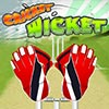 Guichet de cricket jeu
