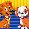 Centre de soins des chiens jeu