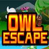 Forêt Owl Escape jeu