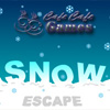 Snow Escape jeu