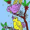 Douces oiseaux voisins à colorier jeu