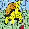 Coloriage de boule et de tortue jeu